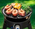 6540-Safari-Chef-2-BBQ-grid-fish-steaks